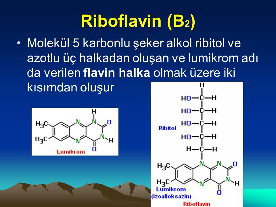 Riboflavin (B2)