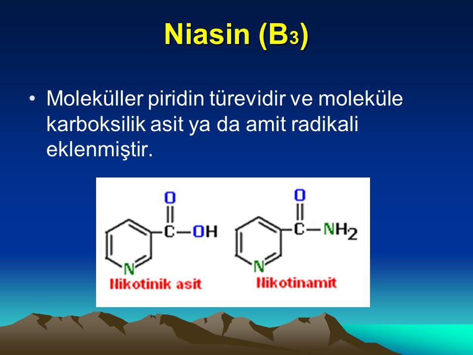 Niasin (B3) Moleküller piridin türevidir ve moleküle karboksilik asit ya da amit radikali eklenmiştir.