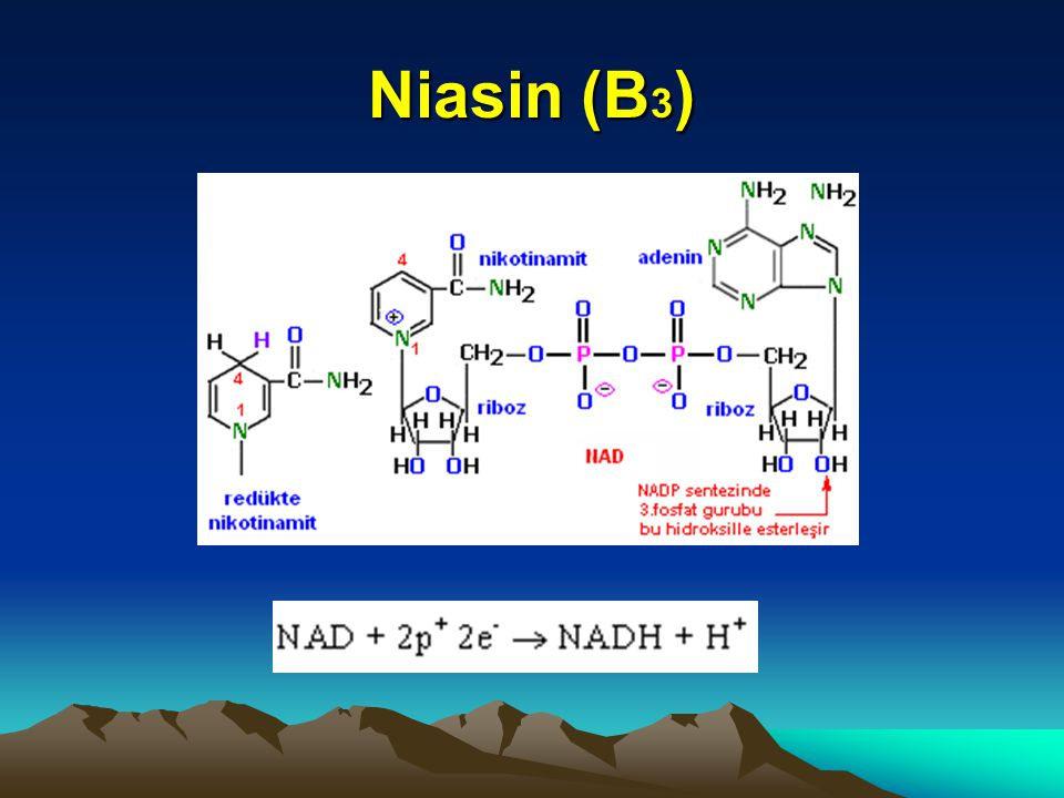 Niasin (B3)