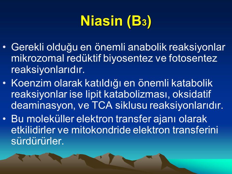 Niasin (B3) Gerekli olduğu en önemli anabolik reaksiyonlar mikrozomal redüktif biyosentez ve fotosentez reaksiyonlarıdır.