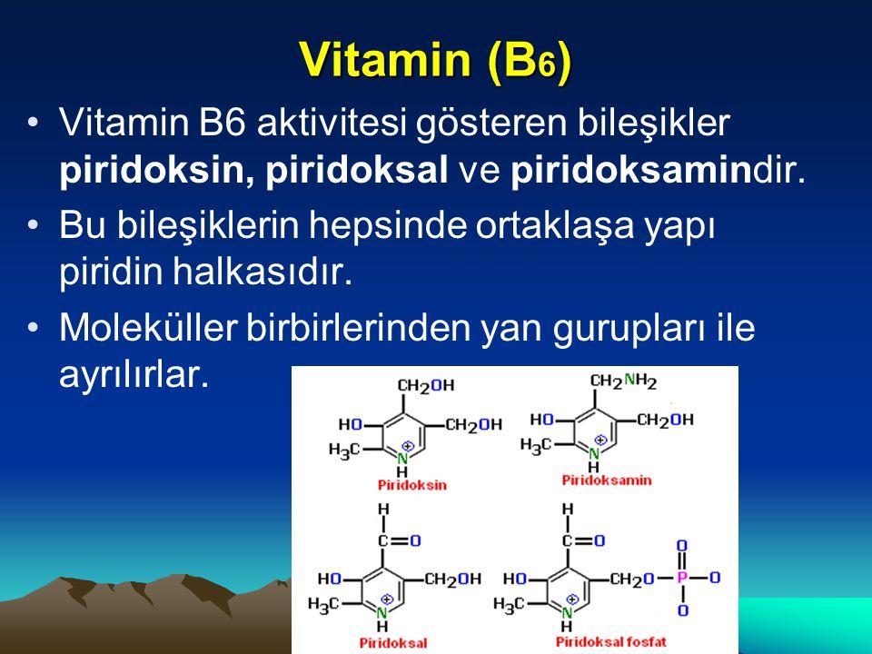 Vitamin (B6) Vitamin B6 aktivitesi gösteren bileşikler piridoksin, piridoksal ve piridoksamindir.