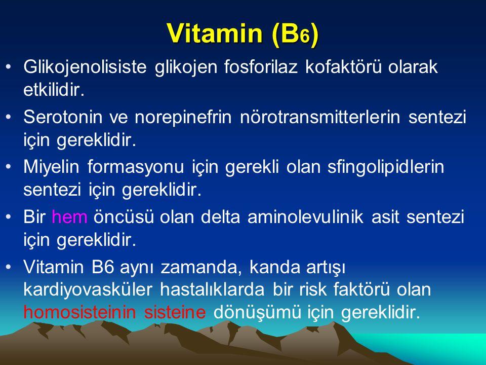 Vitamin (B6) Glikojenolisiste glikojen fosforilaz kofaktörü olarak etkilidir.