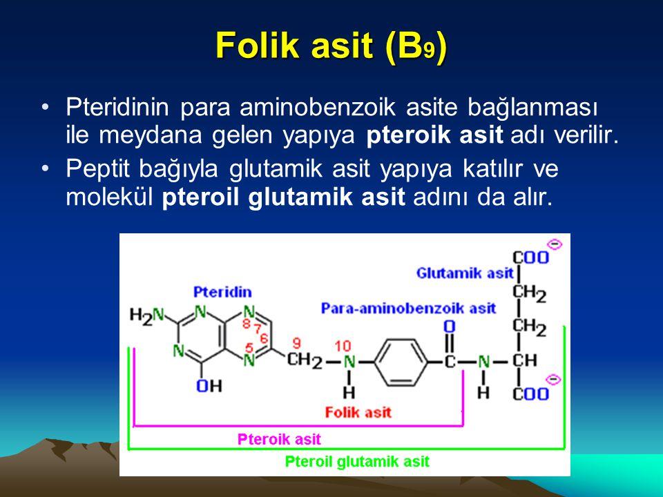 Folik asit (B9) Pteridinin para aminobenzoik asite bağlanması ile meydana gelen yapıya pteroik asit adı verilir.