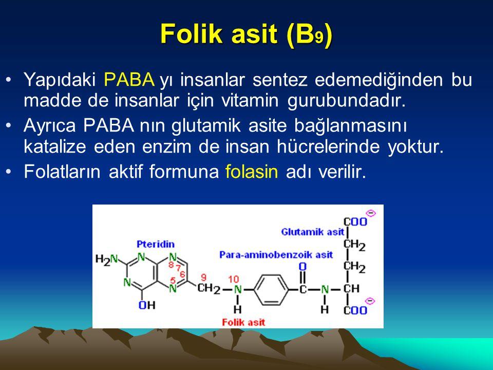 Folik asit (B9) Yapıdaki PABA yı insanlar sentez edemediğinden bu madde de insanlar için vitamin gurubundadır.