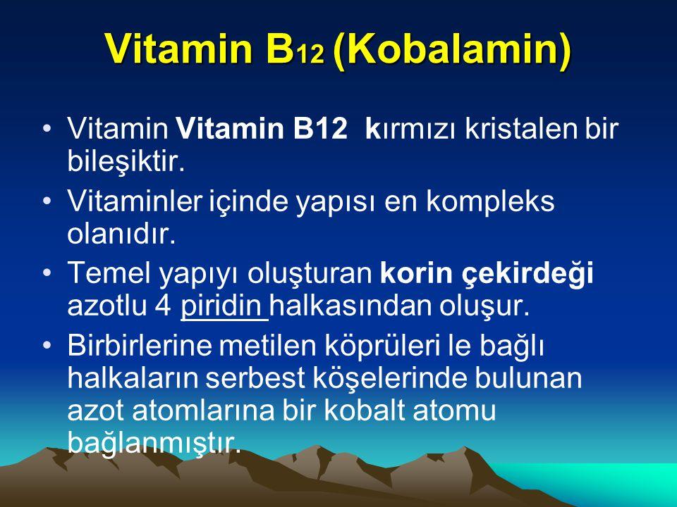 Vitamin B12 (Kobalamin) Vitamin Vitamin B12 kırmızı kristalen bir bileşiktir. Vitaminler içinde yapısı en kompleks olanıdır.