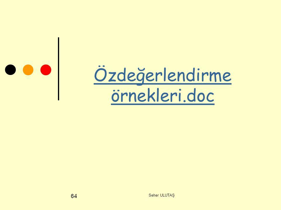 Özdeğerlendirme örnekleri.doc