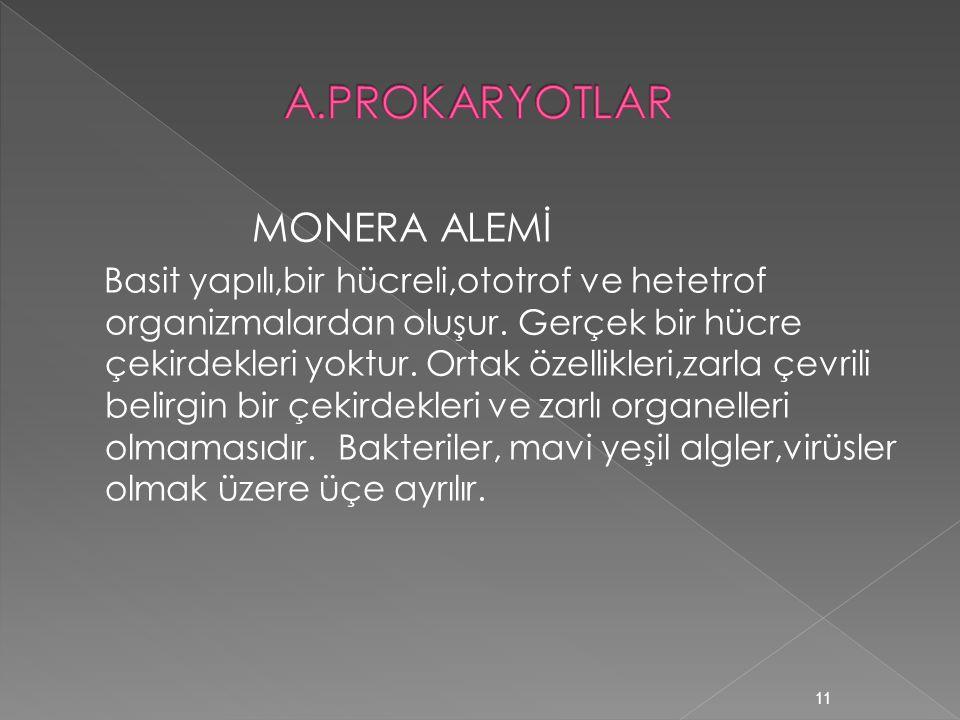 A.PROKARYOTLAR MONERA ALEMİ
