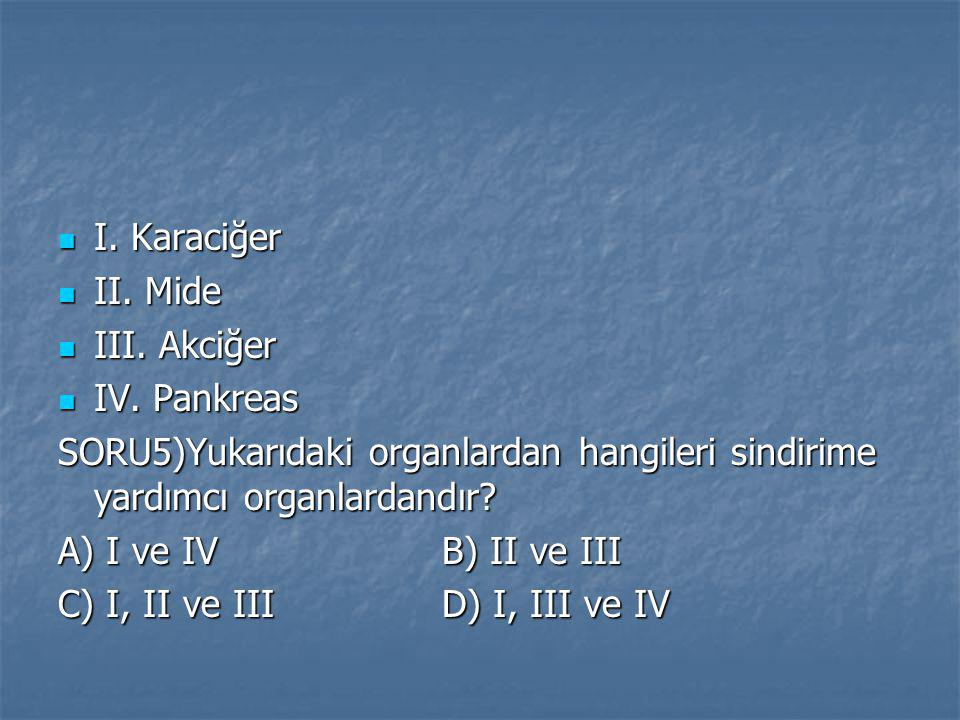 I. Karaciğer II. Mide. III. Akciğer. IV. Pankreas. SORU5)Yukarıdaki organlardan hangileri sindirime yardımcı organlardandır