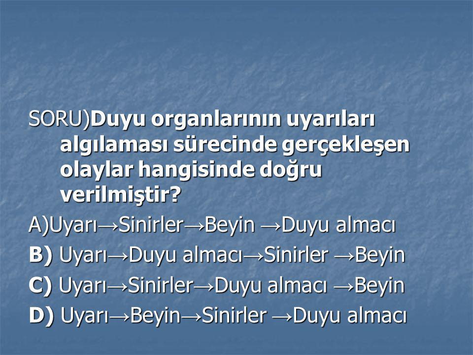 SORU)Duyu organlarının uyarıları algılaması sürecinde gerçekleşen olaylar hangisinde doğru verilmiştir