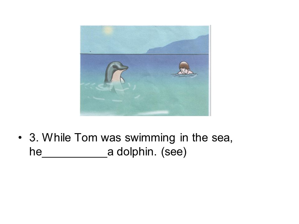 3. While Tom was swimming in the sea, he__________a dolphin. (see)