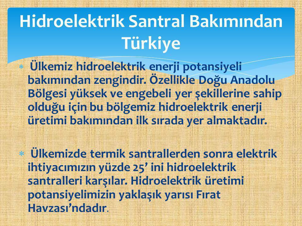 Hidroelektrik Santral Bakımından Türkiye