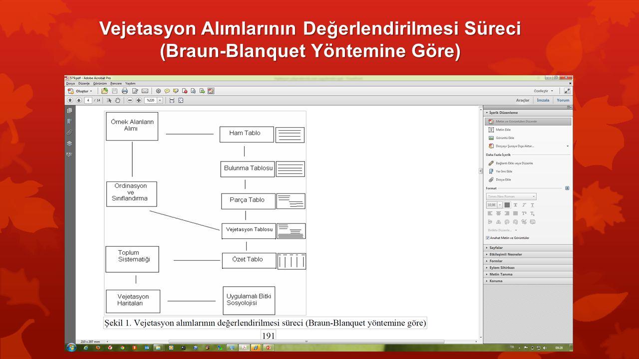 Vejetasyon Alımlarının Değerlendirilmesi Süreci (Braun-Blanquet Yöntemine Göre)