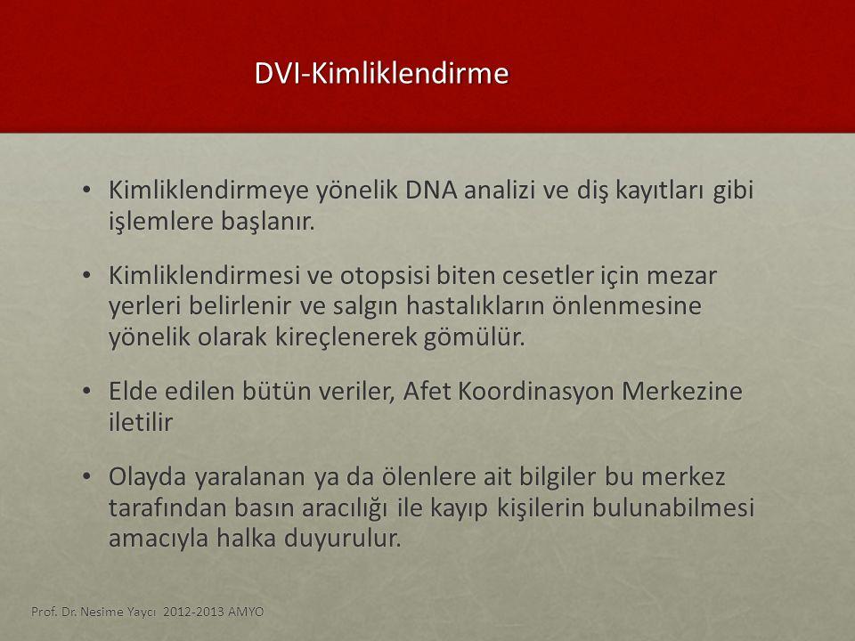 DVI-Kimliklendirme Kimliklendirmeye yönelik DNA analizi ve diş kayıtları gibi işlemlere başlanır.
