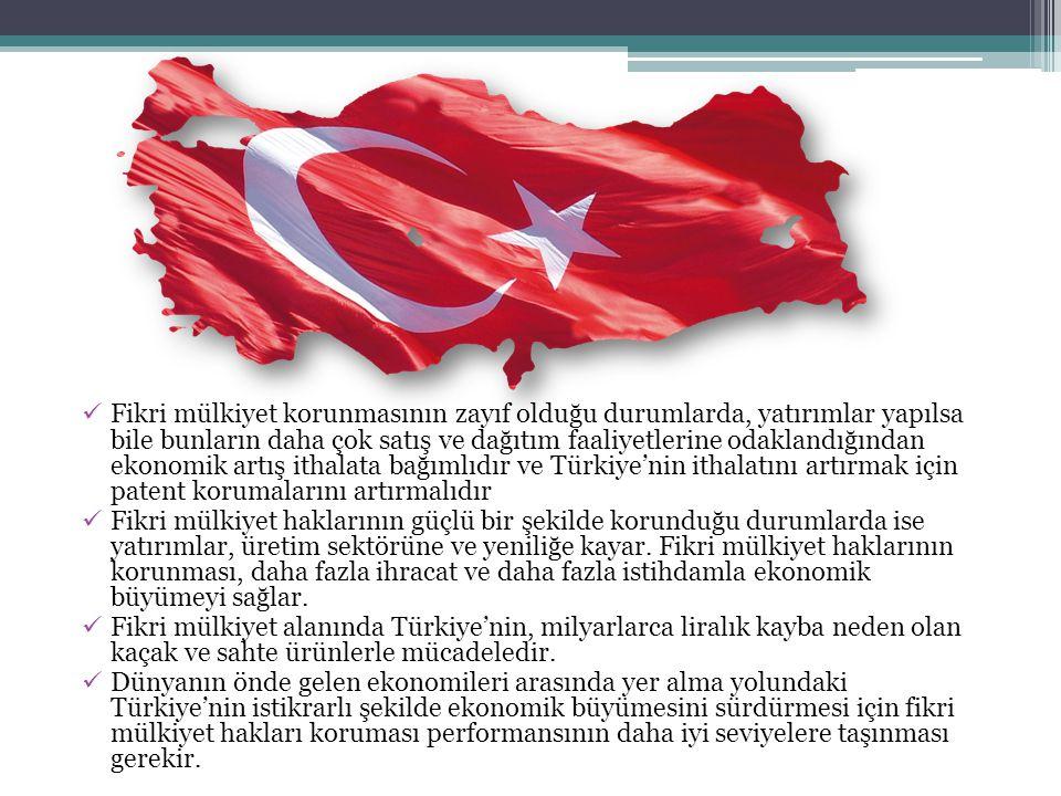Fikri mülkiyet korunmasının zayıf olduğu durumlarda, yatırımlar yapılsa bile bunların daha çok satış ve dağıtım faaliyetlerine odaklandığından ekonomik artış ithalata bağımlıdır ve Türkiye'nin ithalatını artırmak için patent korumalarını artırmalıdır