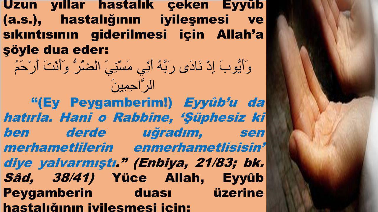 Uzun yıllar hastalık çeken Eyyûb (a. s