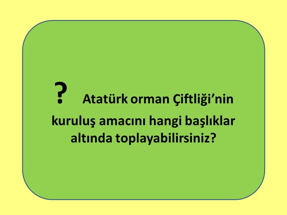 Atatürk orman Çiftliği'nin kuruluş amacını hangi başlıklar altında toplayabilirsiniz