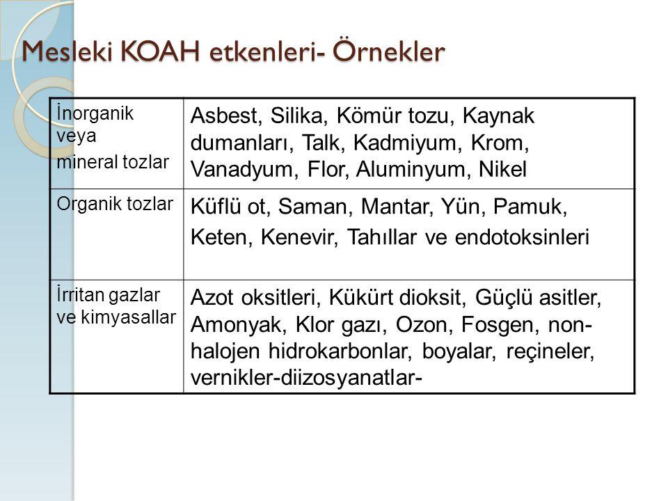 Mesleki KOAH etkenleri- Örnekler
