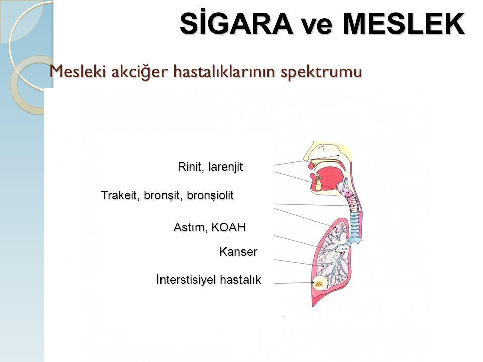 Mesleki akciğer hastalıklarının spektrumu
