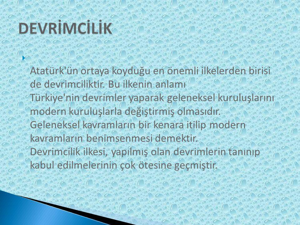 DEVRİMCİLİK
