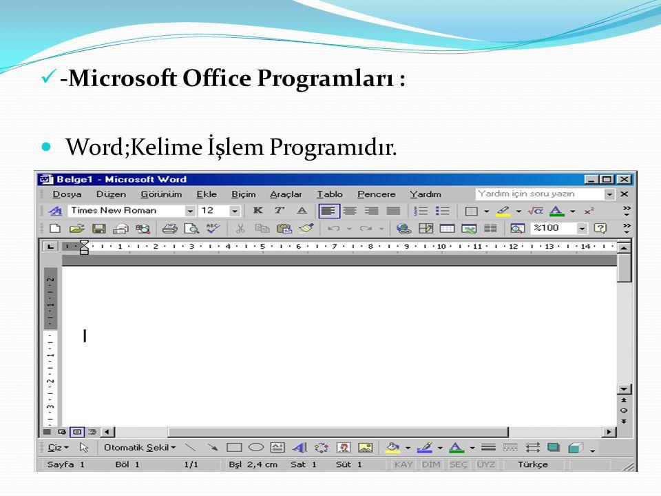 -Microsoft Office Programları :