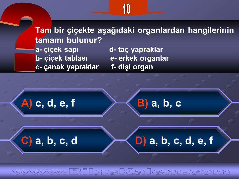 10 www.BilgeKalem.com A) c, d, e, f