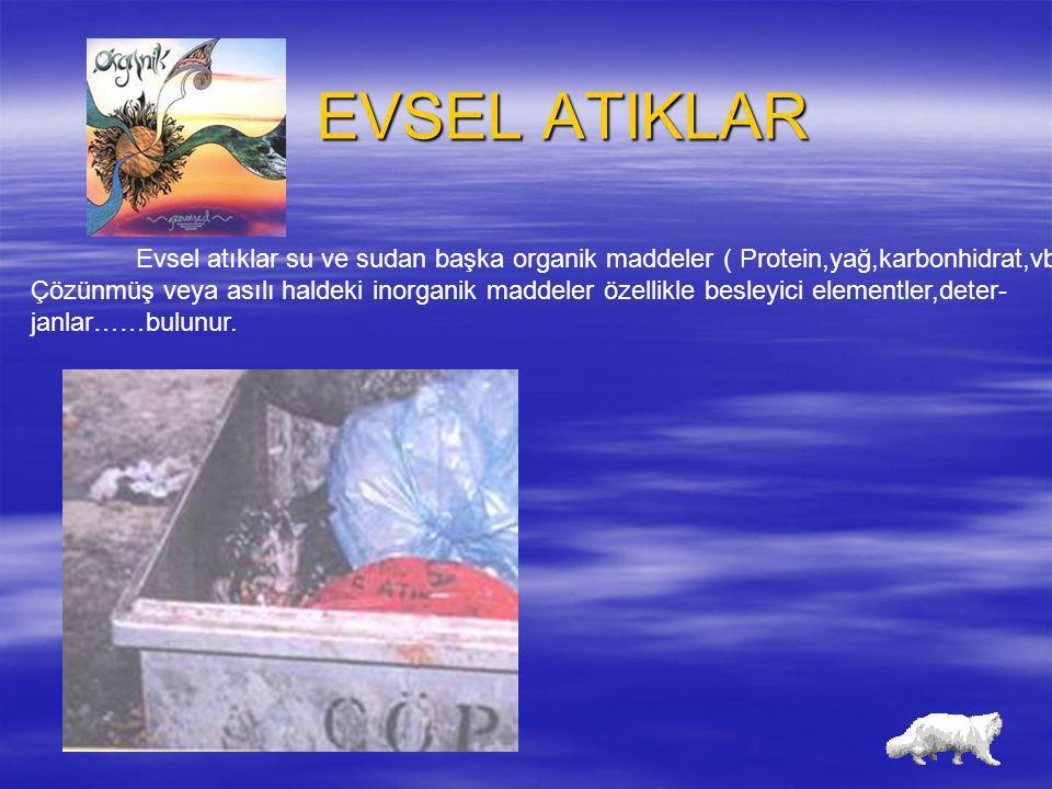 EVSEL ATIKLAR Evsel atıklar su ve sudan başka organik maddeler ( Protein,yağ,karbonhidrat,vb)