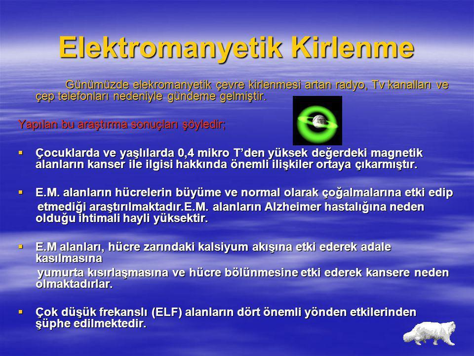 Elektromanyetik Kirlenme