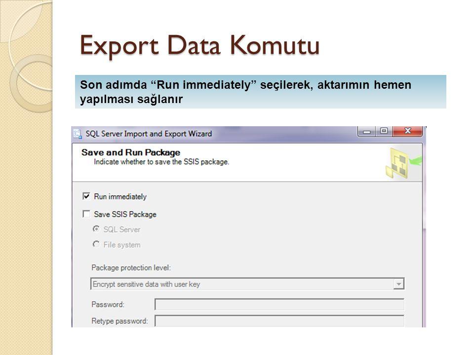 Export Data Komutu Son adımda Run immediately seçilerek, aktarımın hemen yapılması sağlanır