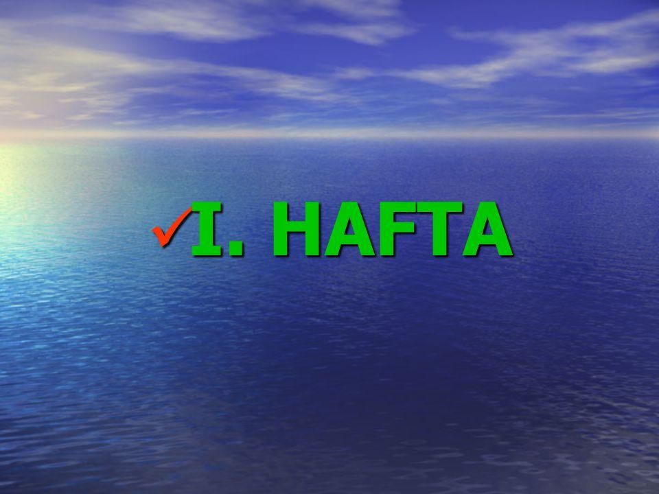 I. HAFTA