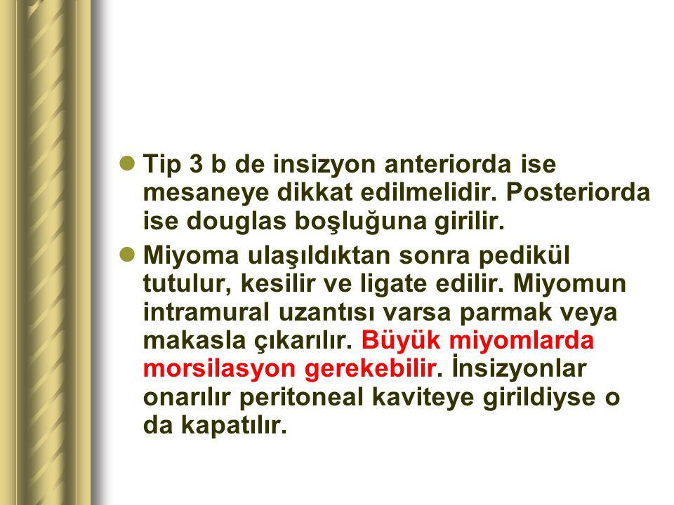 Tip 3 b de insizyon anteriorda ise mesaneye dikkat edilmelidir