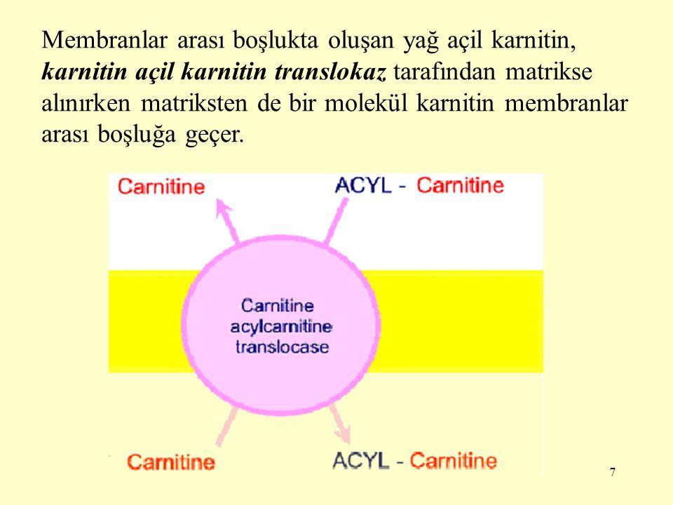 Membranlar arası boşlukta oluşan yağ açil karnitin, karnitin açil karnitin translokaz tarafından matrikse alınırken matriksten de bir molekül karnitin membranlar arası boşluğa geçer.