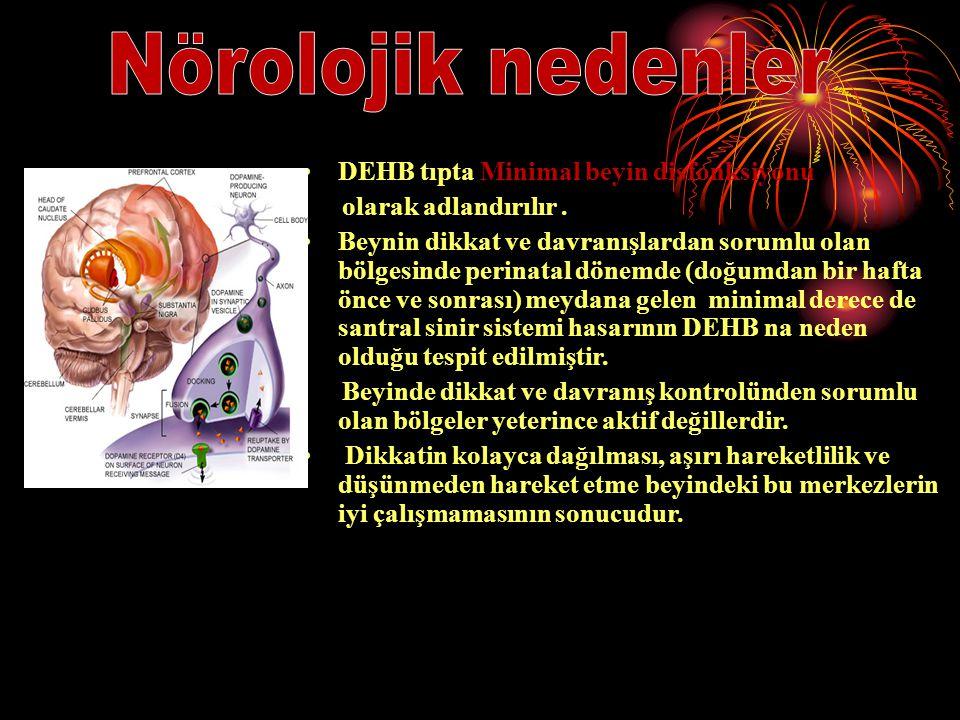 Nörolojik nedenler DEHB tıpta Minimal beyin disfonksiyonu