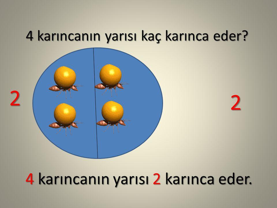4 karıncanın yarısı kaç karınca eder