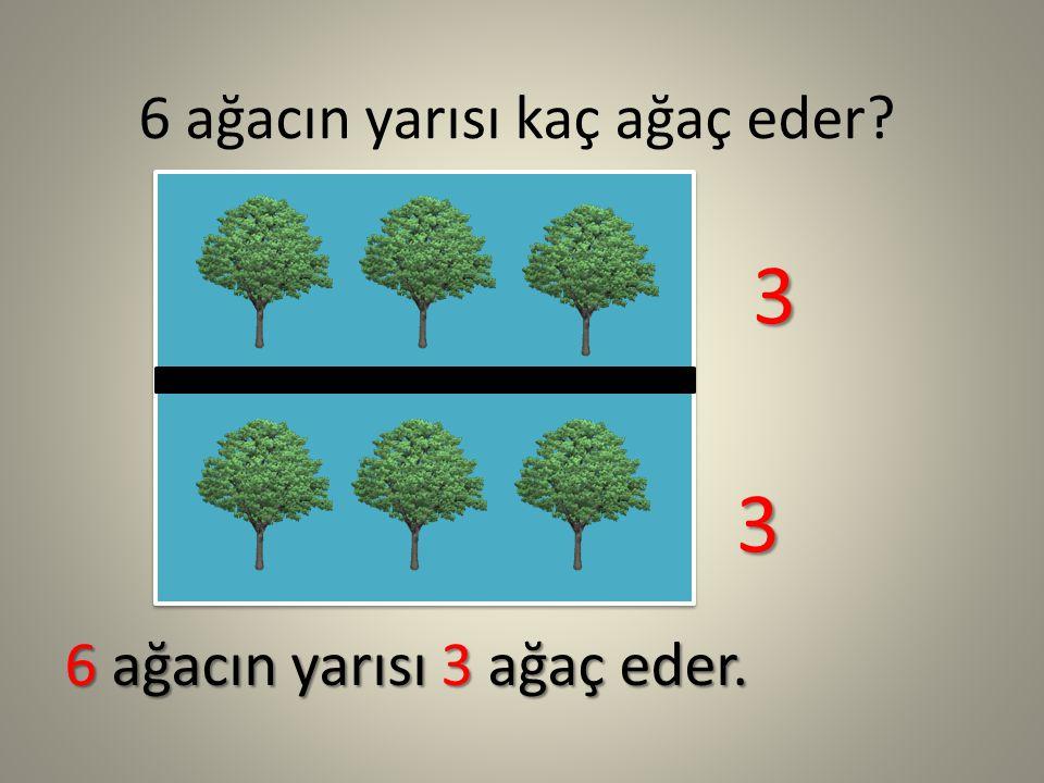 6 ağacın yarısı kaç ağaç eder