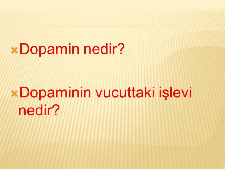 Dopamin nedir Dopaminin vucuttaki işlevi nedir