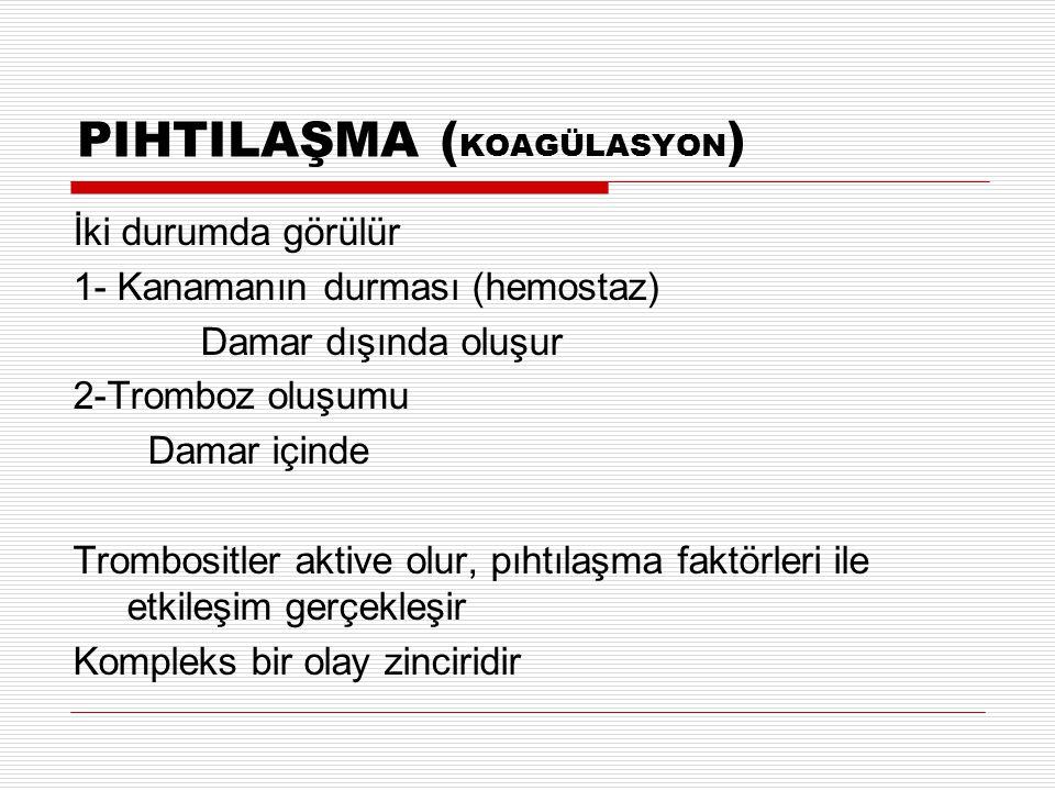 PIHTILAŞMA (KOAGÜLASYON)
