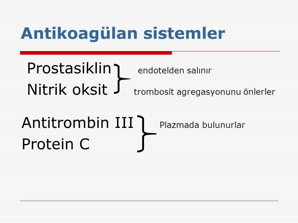 Antikoagülan sistemler
