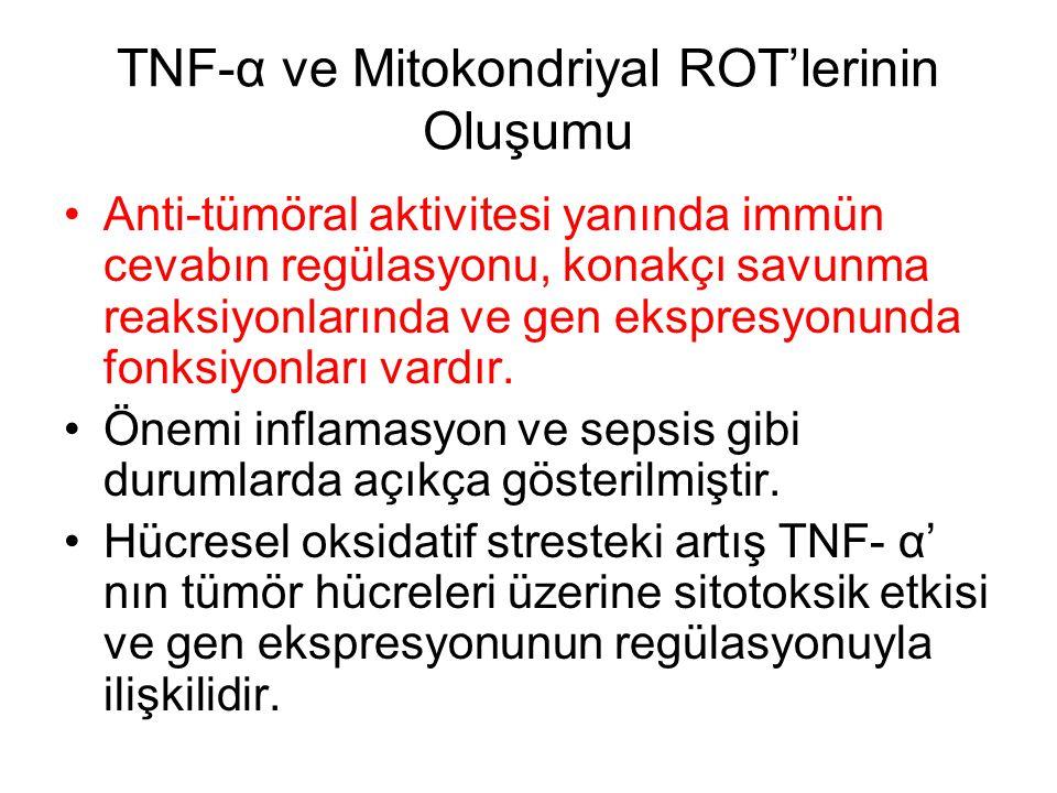 TNF-α ve Mitokondriyal ROT'lerinin Oluşumu