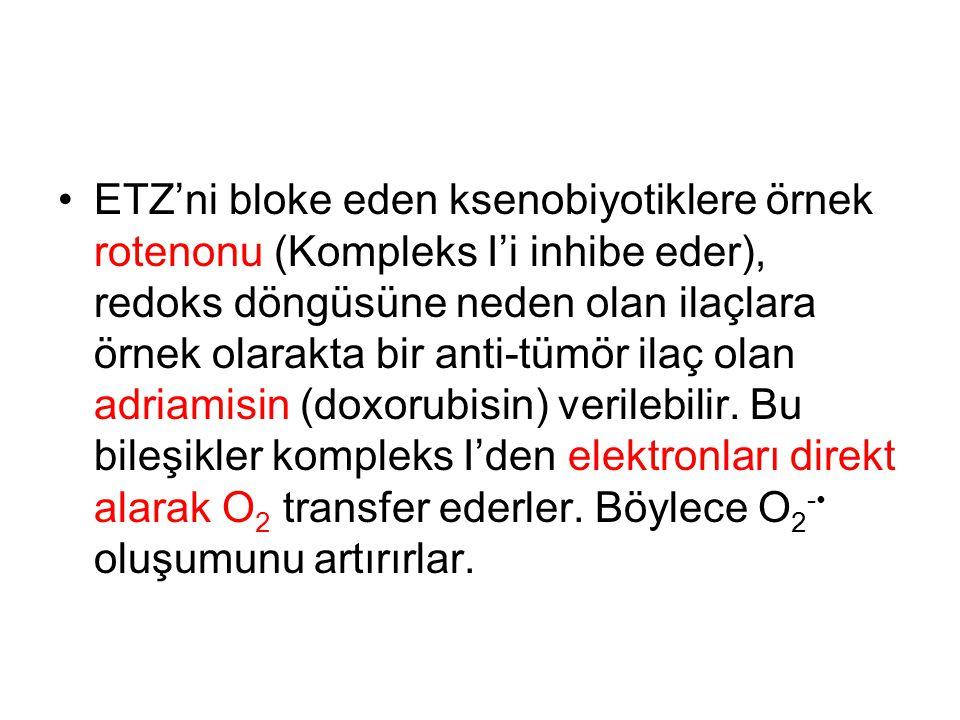 ETZ'ni bloke eden ksenobiyotiklere örnek rotenonu (Kompleks I'i inhibe eder), redoks döngüsüne neden olan ilaçlara örnek olarakta bir anti-tümör ilaç olan adriamisin (doxorubisin) verilebilir.