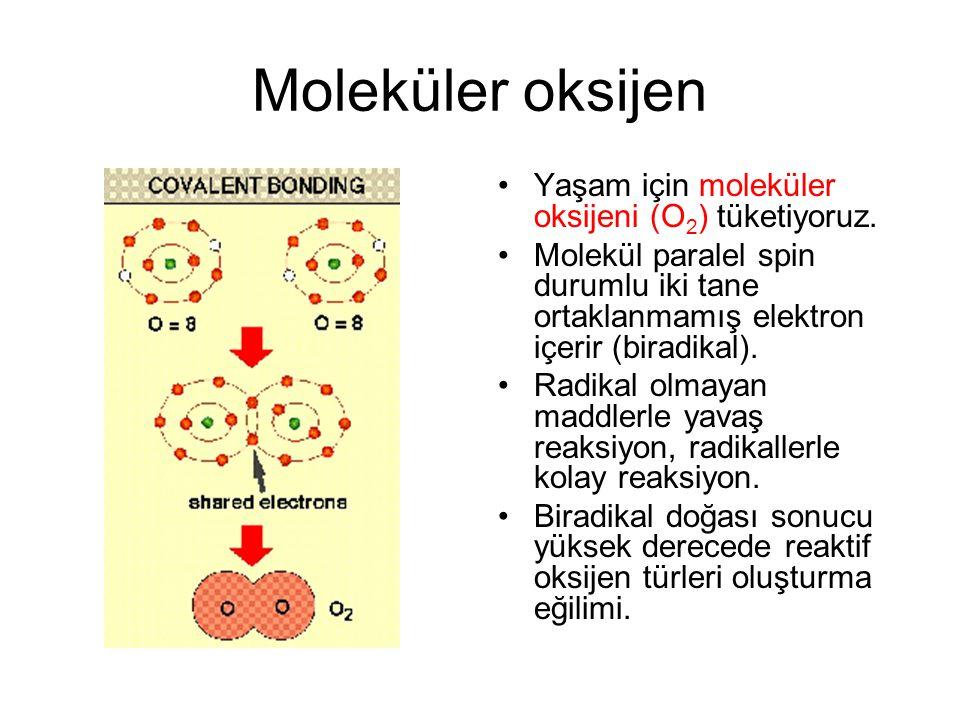 Moleküler oksijen Yaşam için moleküler oksijeni (O2) tüketiyoruz.