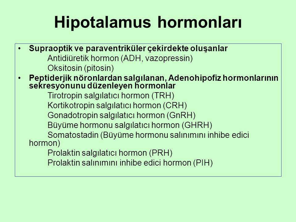 Hipotalamus hormonları