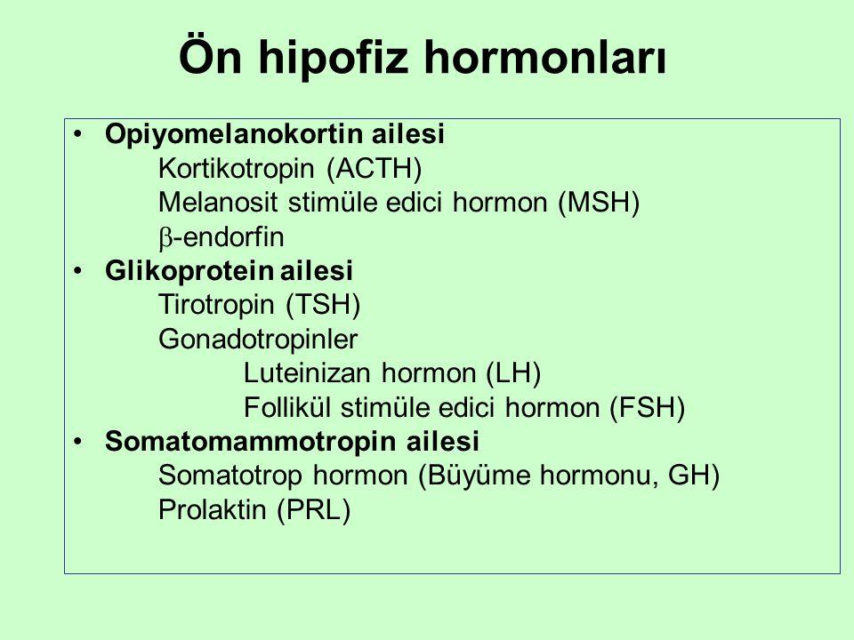 Ön hipofiz hormonları Opiyomelanokortin ailesi Kortikotropin (ACTH)