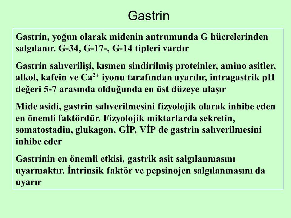 Gastrin Gastrin, yoğun olarak midenin antrumunda G hücrelerinden salgılanır. G-34, G-17-, G-14 tipleri vardır.