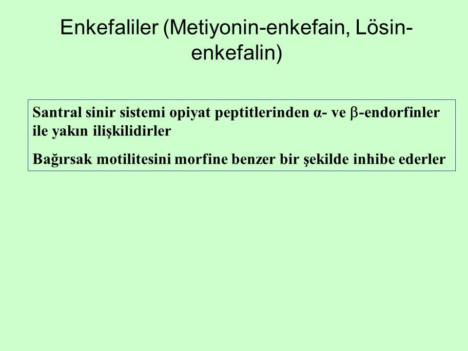 Enkefaliler (Metiyonin-enkefain, Lösin-enkefalin)