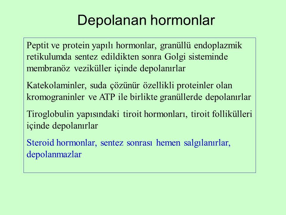 Depolanan hormonlar