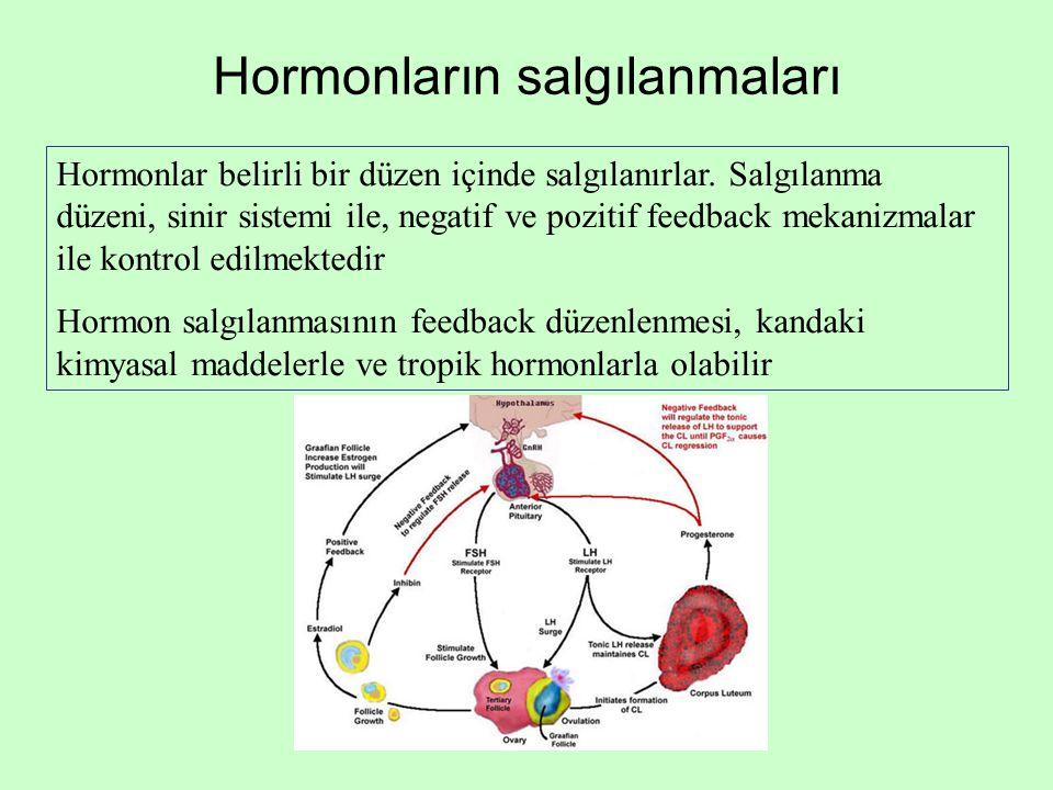 Hormonların salgılanmaları