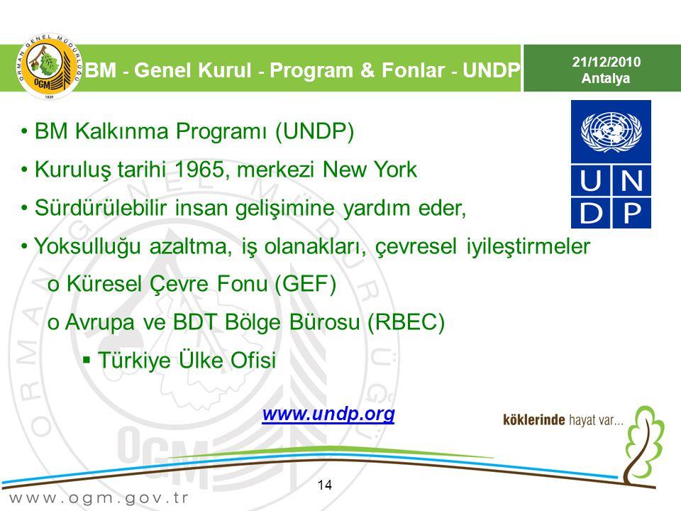 BM Kalkınma Programı (UNDP) Kuruluş tarihi 1965, merkezi New York