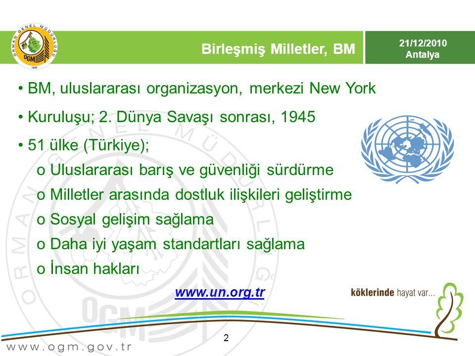 BM, uluslararası organizasyon, merkezi New York