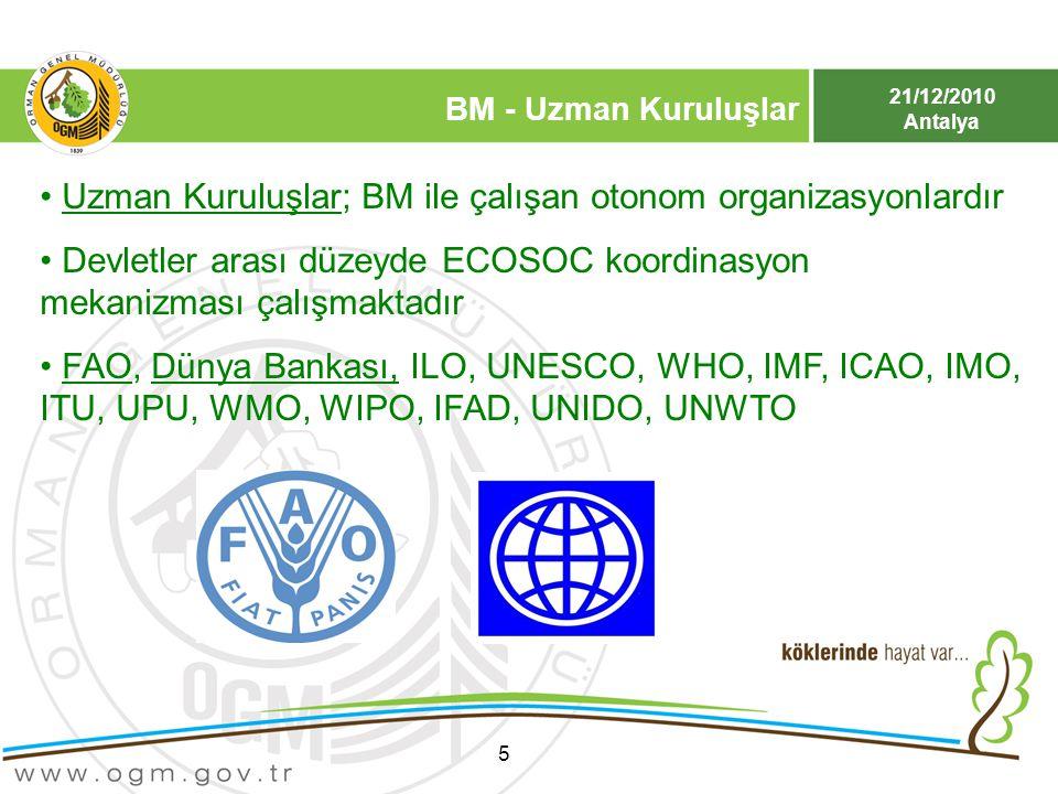 Uzman Kuruluşlar; BM ile çalışan otonom organizasyonlardır