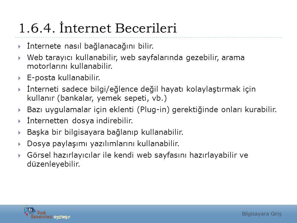 1.6.4. İnternet Becerileri İnternete nasıl bağlanacağını bilir.
